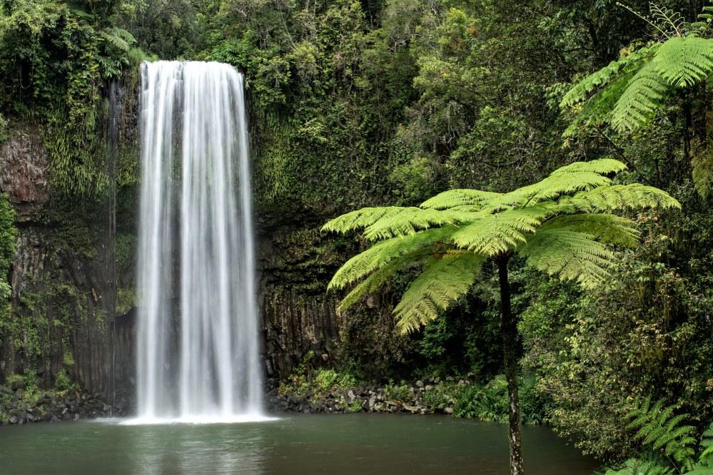 Millaa Millaa Falls, QLD.